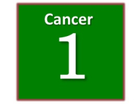 cancer and critical illness insurance