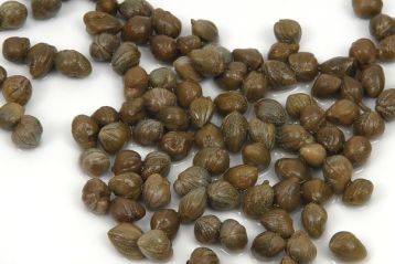 Pickled capers and heart health