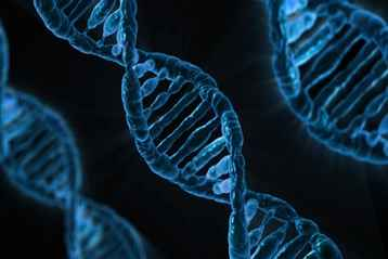 Gene Delays Ovarian Cancer